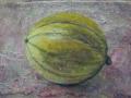 Charentais-Melone-mW