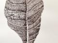 2019-365 Blatt des brasilianischen Mandelbaums mW